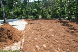 fibre de coco séchée peat de coco substrat