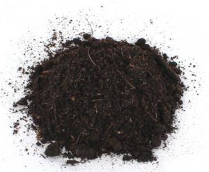 terre de bruyère véritable plante acidophile