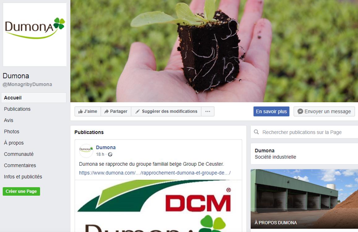 Page Facebook Dumona