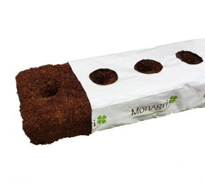 pain de coco culture hors-sol