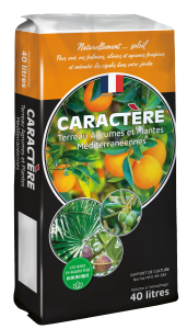 terreau agrumes et plantes méditerranéennes