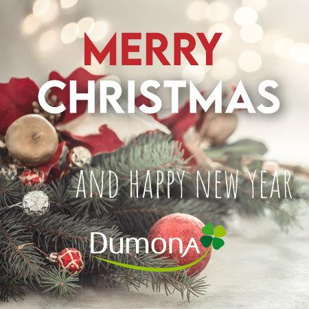 Joyeux Noël et bonne année 2021 !